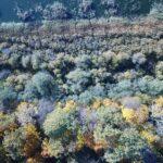 Drona foto Durbes ezers